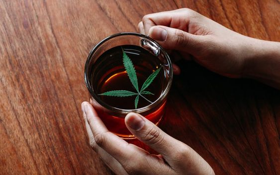 konopljin čaj vršiček