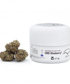 CBD Glueberry konopljini vršički