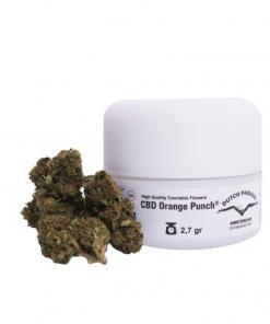 CBD Orange Punch konopljini vršički
